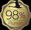 98 plumon